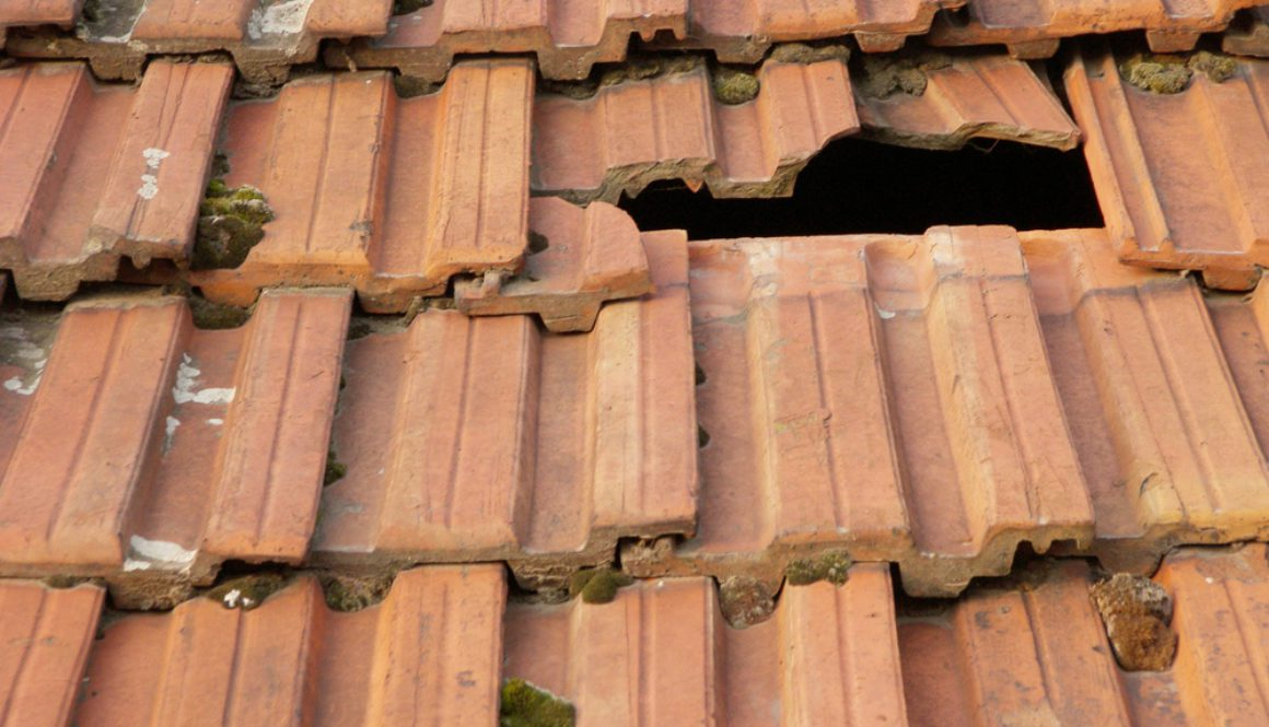What to do if you have a commercial roof leak
