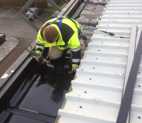 Visual roof survey